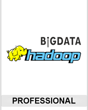 BD-Pro.png