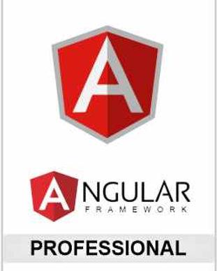 Angular Professional.jpg