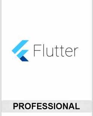 Flutter Pro.jpg