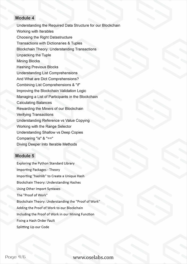 Block Chain Professional pg4.jpg