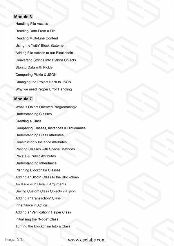 Block Chain Professional pg5.jpg