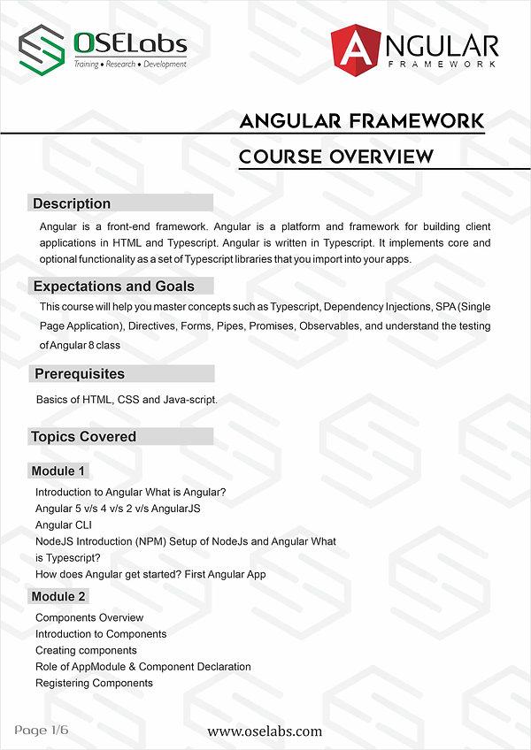 Angular professionals PG1.jpg