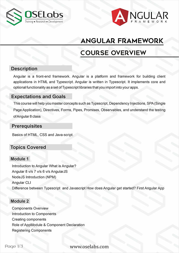Angular students pg1.jpg