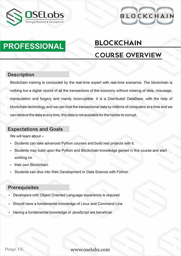 Block Chain Professional pg1.jpg