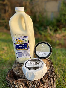 Guanaba Valley Milk