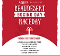Beauy_Boxing Day Poster INSTA.PNG