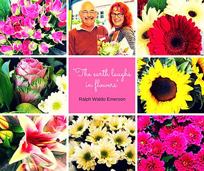 Ulla's Flowers                                                       Fresh Flowers Direct Queensland