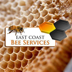 East Coast Bee Services