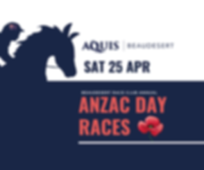 Beauy Anzac Day Website Slider 2020.png