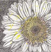 flower[2305843009219293458].jpg