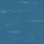 Blue Merle - 12.png