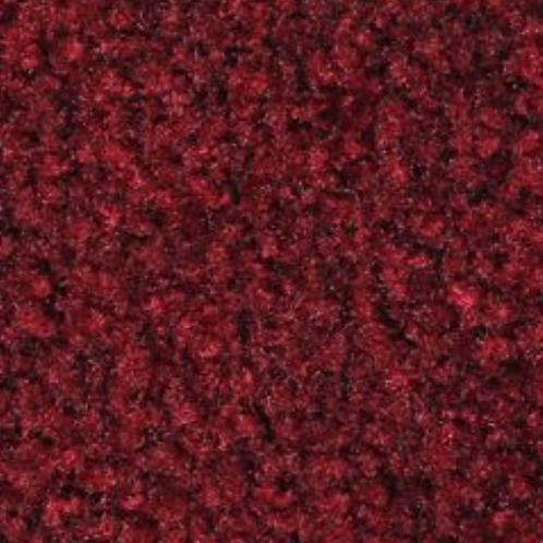 Cranberry 41