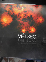 Vết Sẹo / The Scar