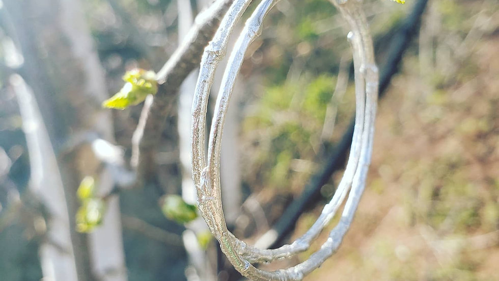 Arbor Basics Hoop - Silver