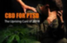 CBD-for-PTSD.jpg