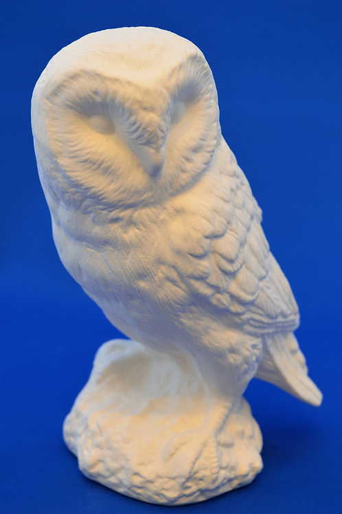BARN OWL, GB131