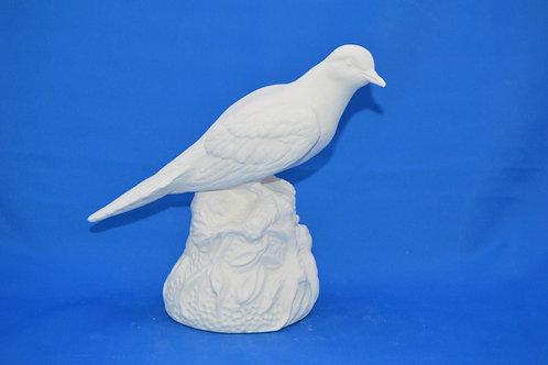 PIGEON , M189, 19 X 16 cms