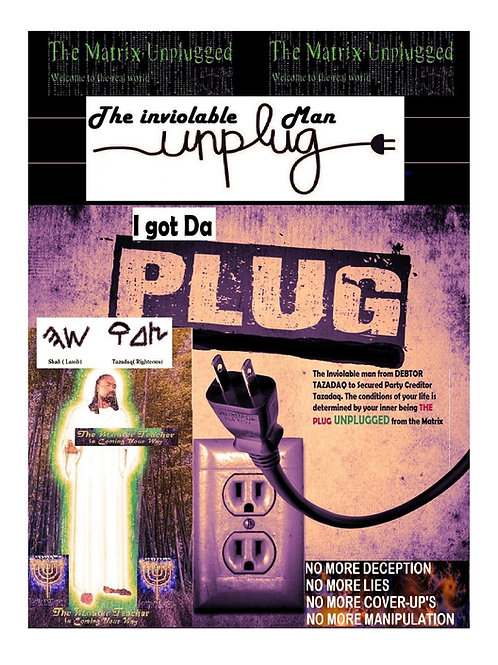 The Inviolable Man The Plug Unplug