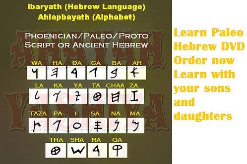 Learn Paleo Hebrew Hebrew DVD