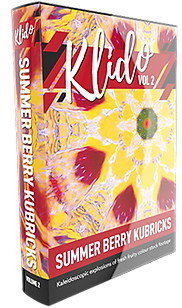 Klido-v2-berry-kubricks-small.png