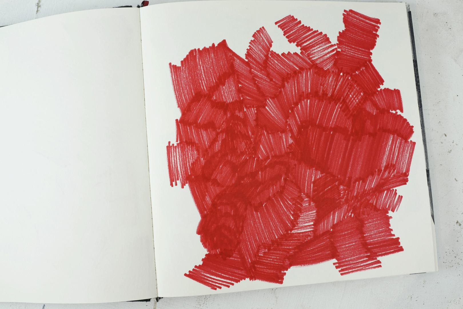 la roja 2.jpg