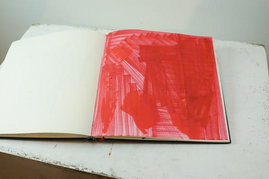 Rojo en columnas.JPG