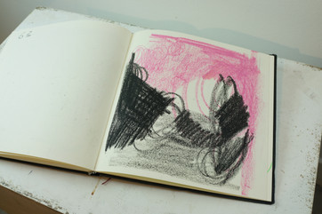 Rosa negro.JPG
