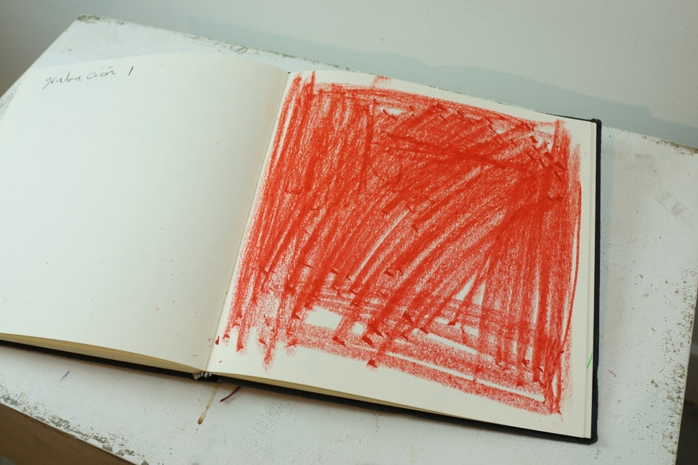 Rojo rayones.JPG