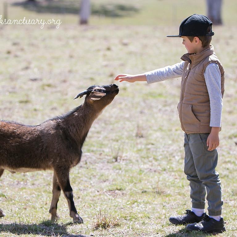 Compassionate Kids @ Little Oak Sanctuary