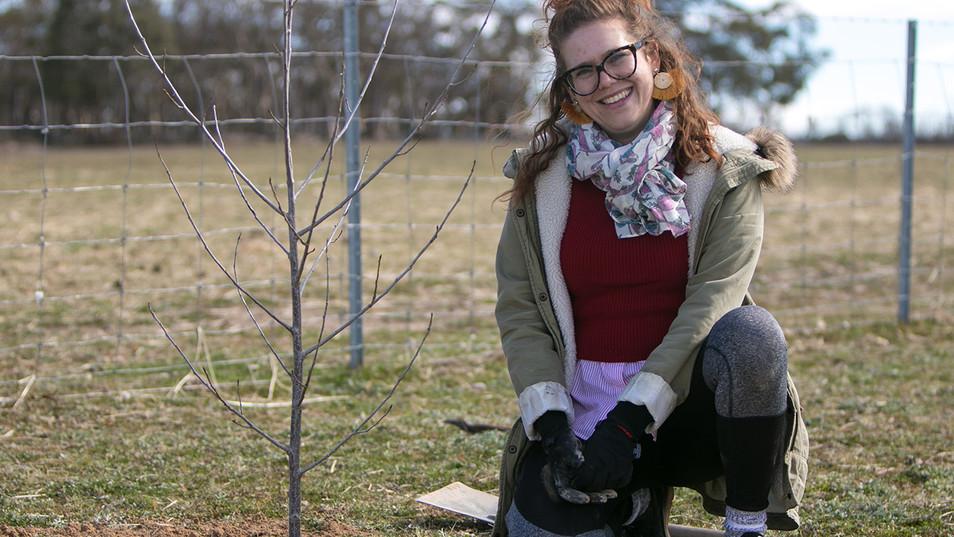 National Tree Day @ Little Oak Sanctuary
