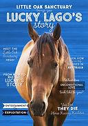 00_Horse.jpg