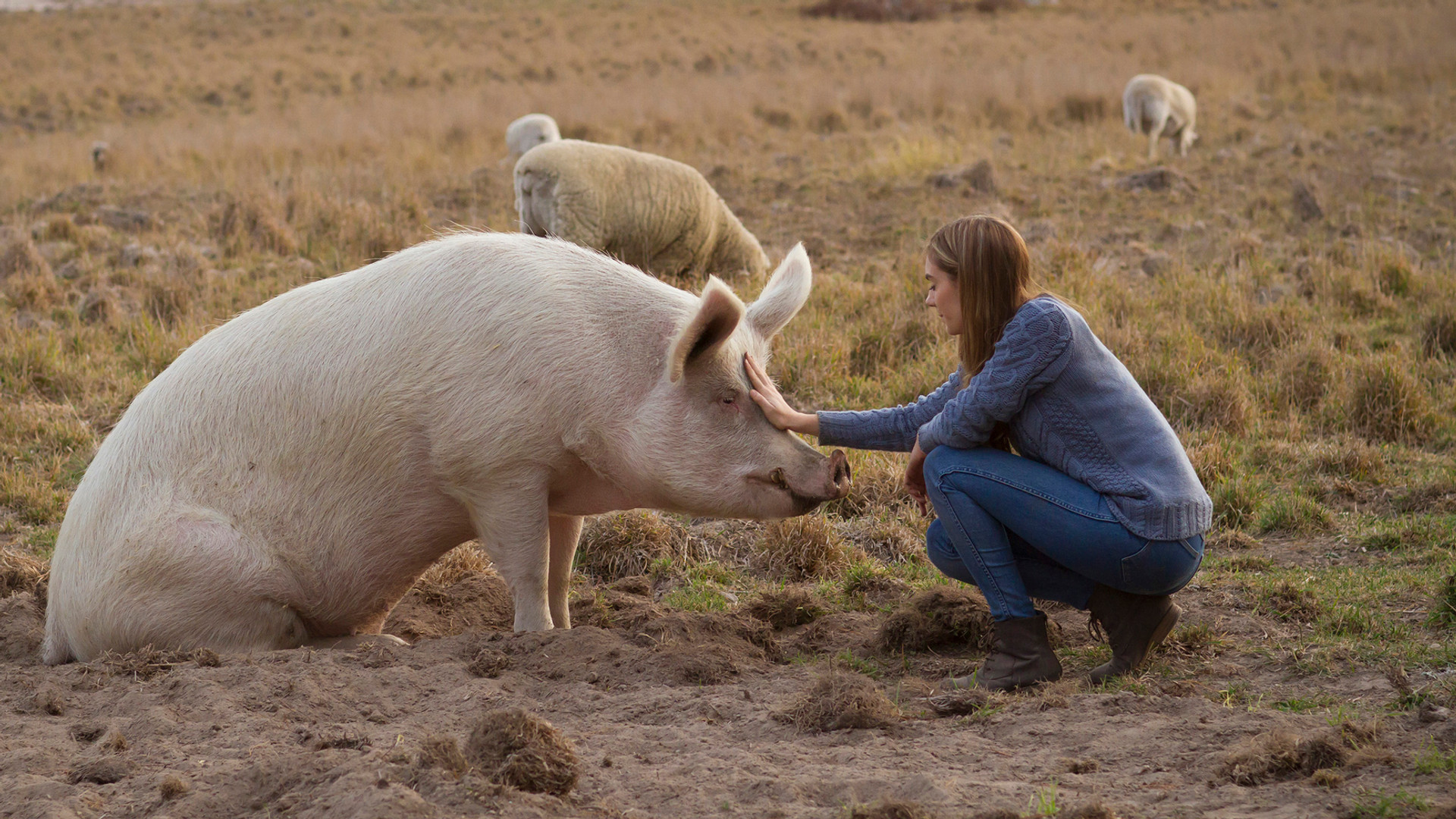 Dr Seuss the rescue pig with Ashley