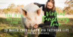 Copy of Virtual Sanctuary Tour.jpg