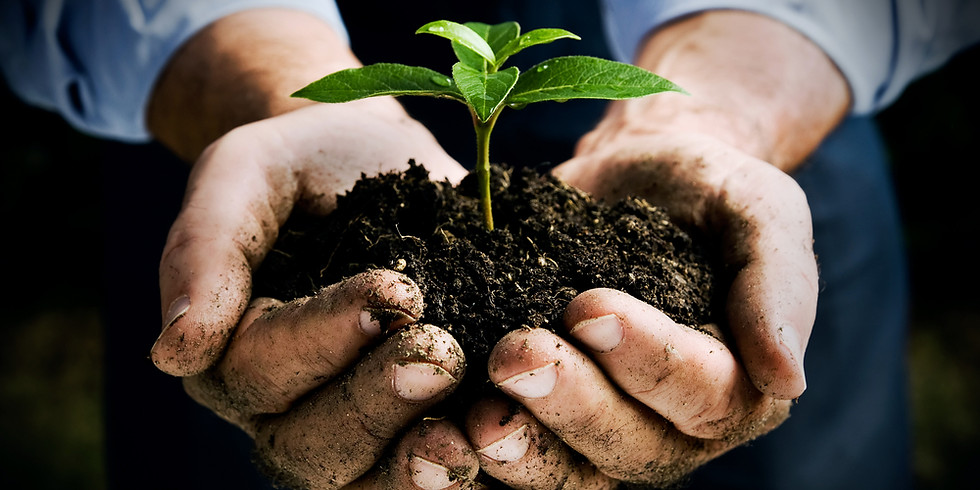 Plant a tree with us (SAT-B)