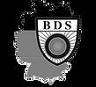 bds-logo-web.png