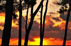black sea sunset