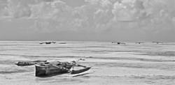 jambiani coast