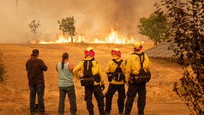The Personal Impact of the California LNU Lightning Complex Fires