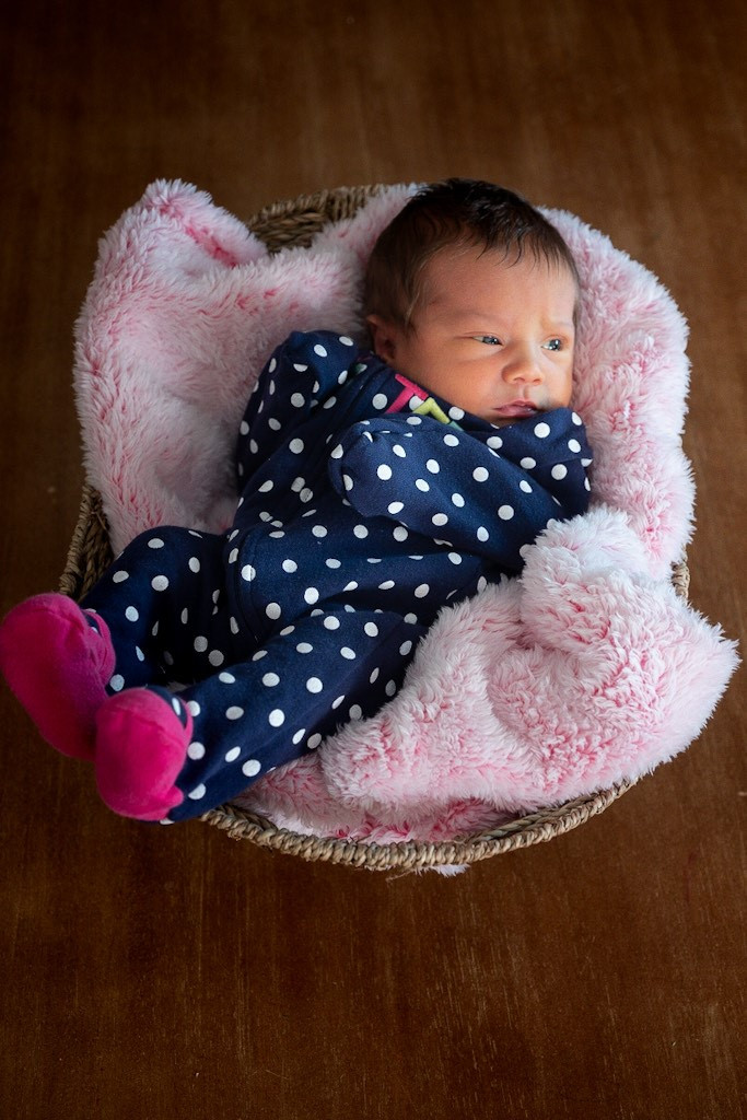 Fairfield CA Family Newborn Portrait session