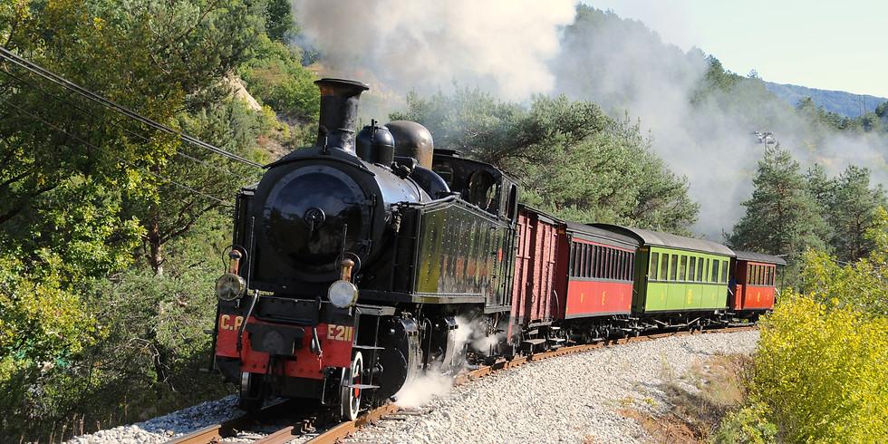 JEP 2021 - Visite et train des pignes à vapeur - Puget-Théniers (06)