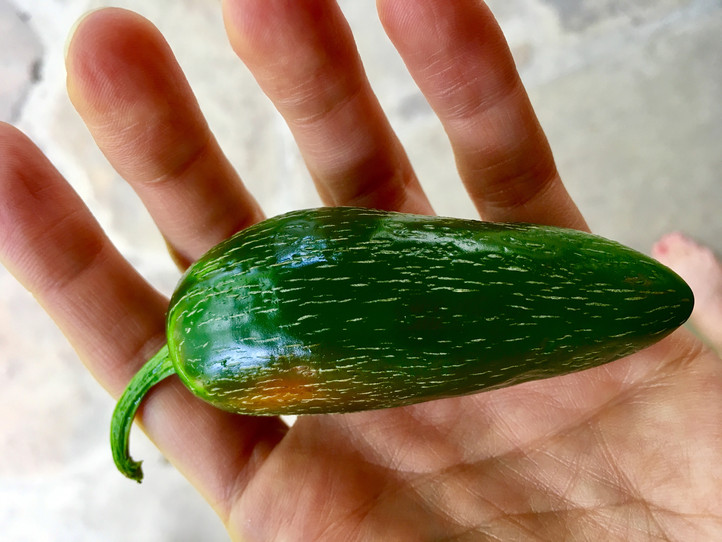 Jalapeño Hack - how to guarantee it's spicy EVERY time!