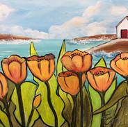 Nantucket Tulips