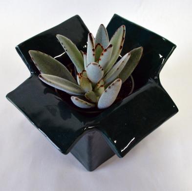 green pot 2.png