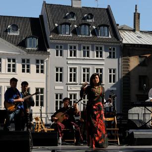 Vietnam Day in Copenhagen, Denmark