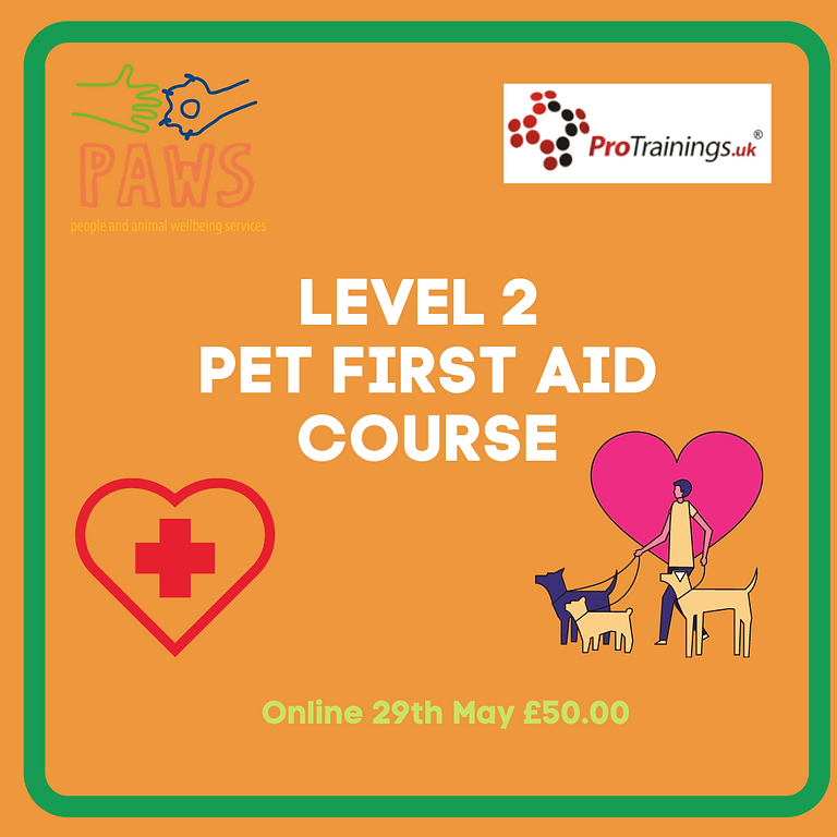 Level 2 Pet First Aid Course