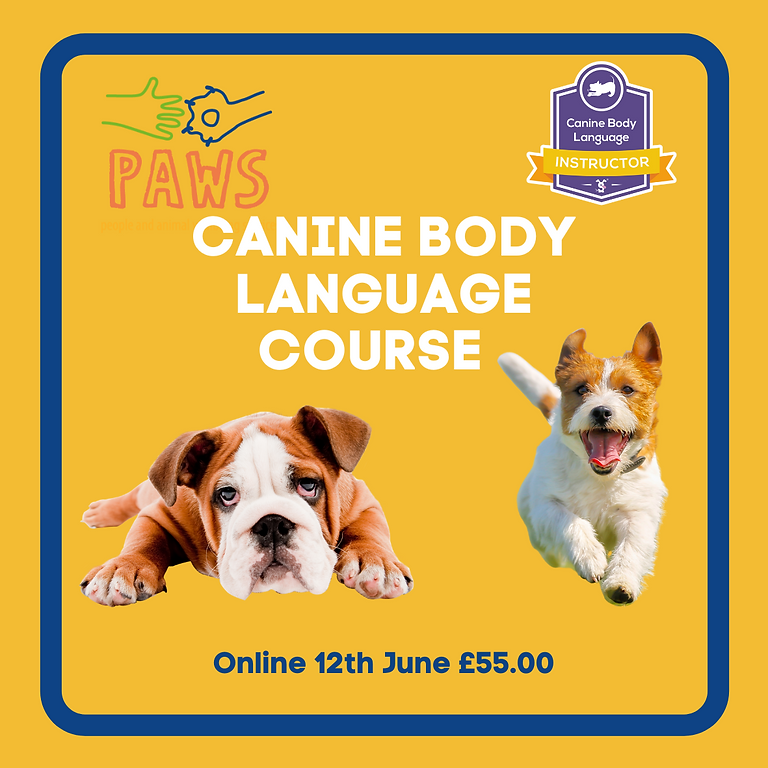 Canine Body Language Course