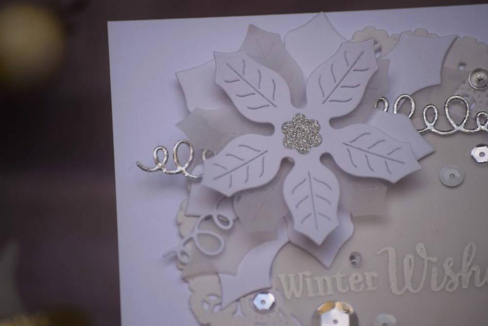white-on-white-dimension-vellum-2b