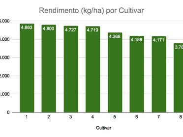 Cultivar ICS 1332 RR - Confira seus pontos fortes!