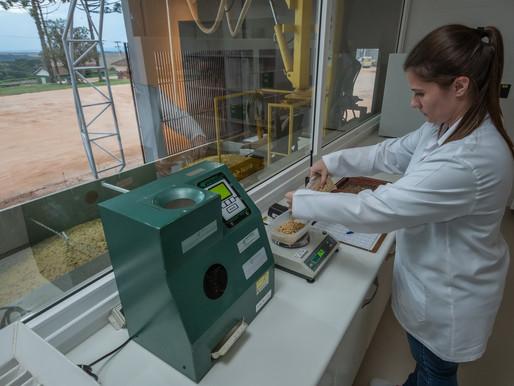 Laboratório de análise de sementes da Sementes Mutuca