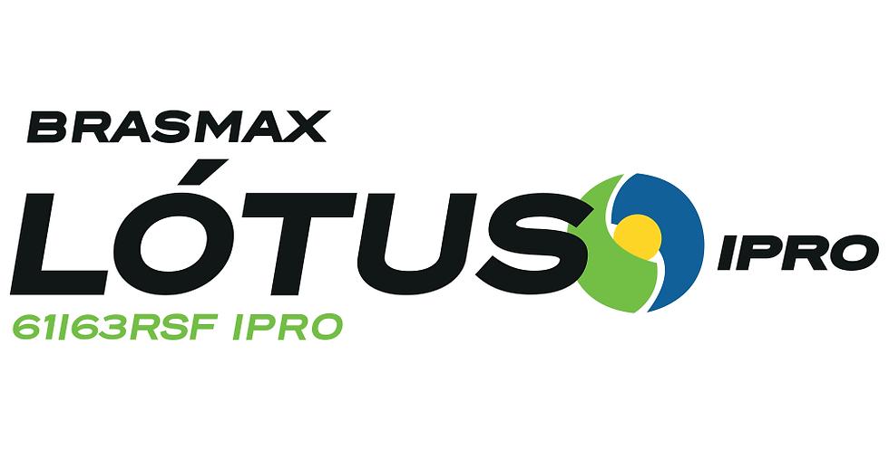BMX Lótus IPRO
